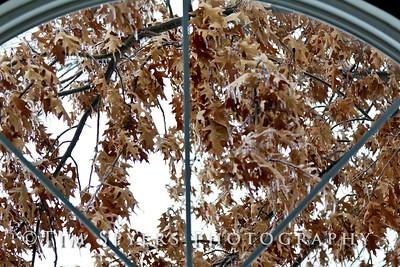 snow_day-20110201-032-35
