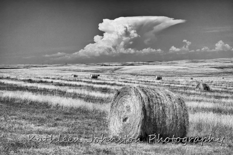 Hay bales in the Sandhills of Nebraska.