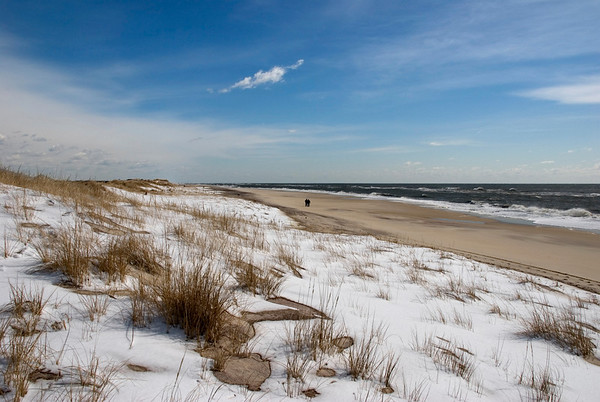 Fire Island in winter