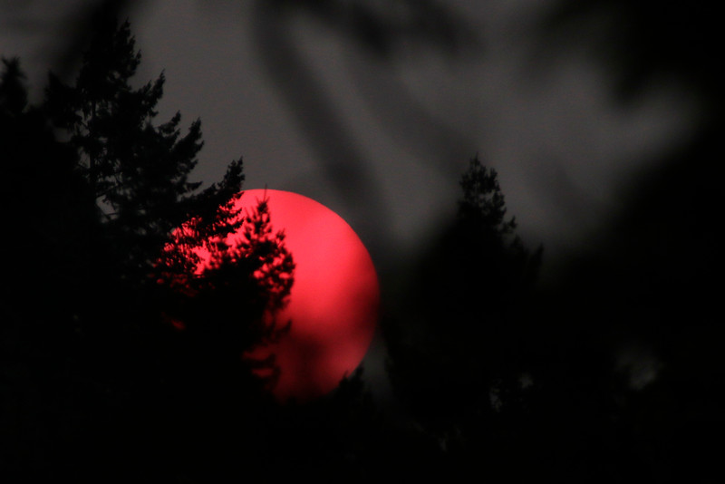 The sunset is photographed from a location near E. 16th Ave. and S. Mt. Vernon St. in Spokane, Wash., Tuesday, Aug. 8, 2017. (Young Kwak)
