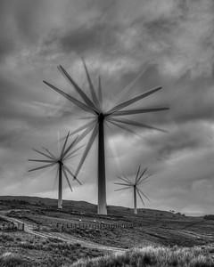 'Flowers', Lambrigg Windfarm, Cumbria, UK