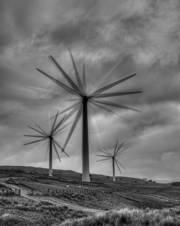 'Flowers', Lambrigg Windfarm, Cumbria, UK
