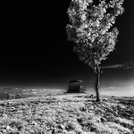 Natural Landscapes in Monochrome : The world as seen in monochrome.