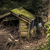 On my daily wander around today I found this run down shed... #shed #derelict #rundown #photooftheday
