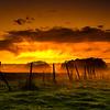 Fire in the Sky, Kendal Racecourse, Cumbria, UK