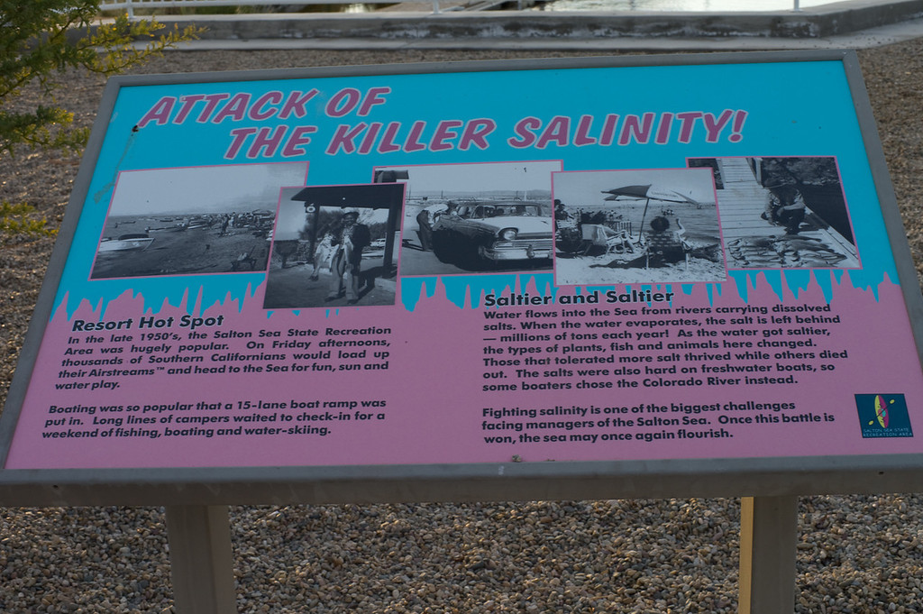 Killer salinity tells it all. People quit putting boats in the lake in the 70s when one day of boating would change the color of the boat's paint. It's a little like the moon with mile after mile of empty beach and lake except for the birds and a lone trailer or two.
