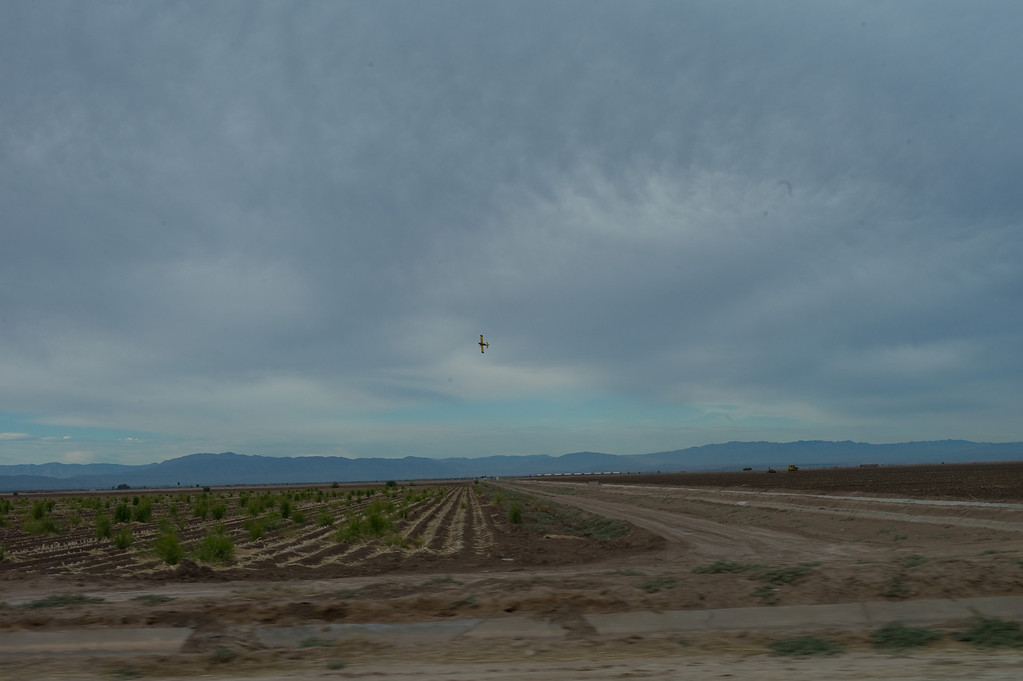 A crop duster plane was amazing to follow and watch.