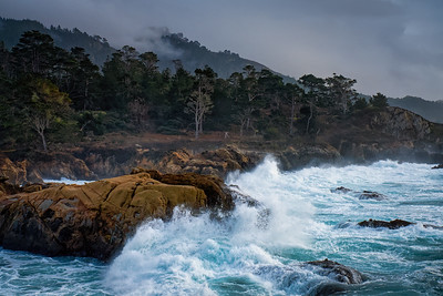 South Pt. Lobos State Reserve Coastline