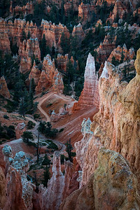 Navajo Trail Into Bryce Canyon