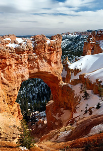 Though this formation is called a bridge, it is really one of several arches located in Bryce Canyon. This arch, sculpted from some of the reddest rock of the Claron Formation (rich in iron oxide minerals), poses a stark contrast to the dark green of the Ponderosa forest that peeks through the arch from the canyon below. Zion National Park, Utah, USA.