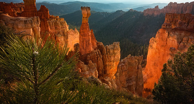 Bryce Canyon Morning