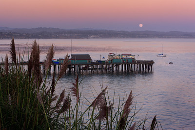 A full moon rises over Capitola Wharf, Capitola, California, USA. Pamaps grass grows on a hillside in the foreground.