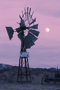 Windmill and Rising Moon