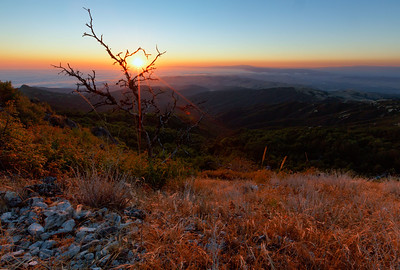 The summer sun sets into fog bank over Monterey Bay as seen from the top of Fremont Peak State Park - elevation 3,000 feet, California, USA.