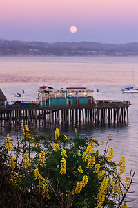 Summer's Evening, Capitola
