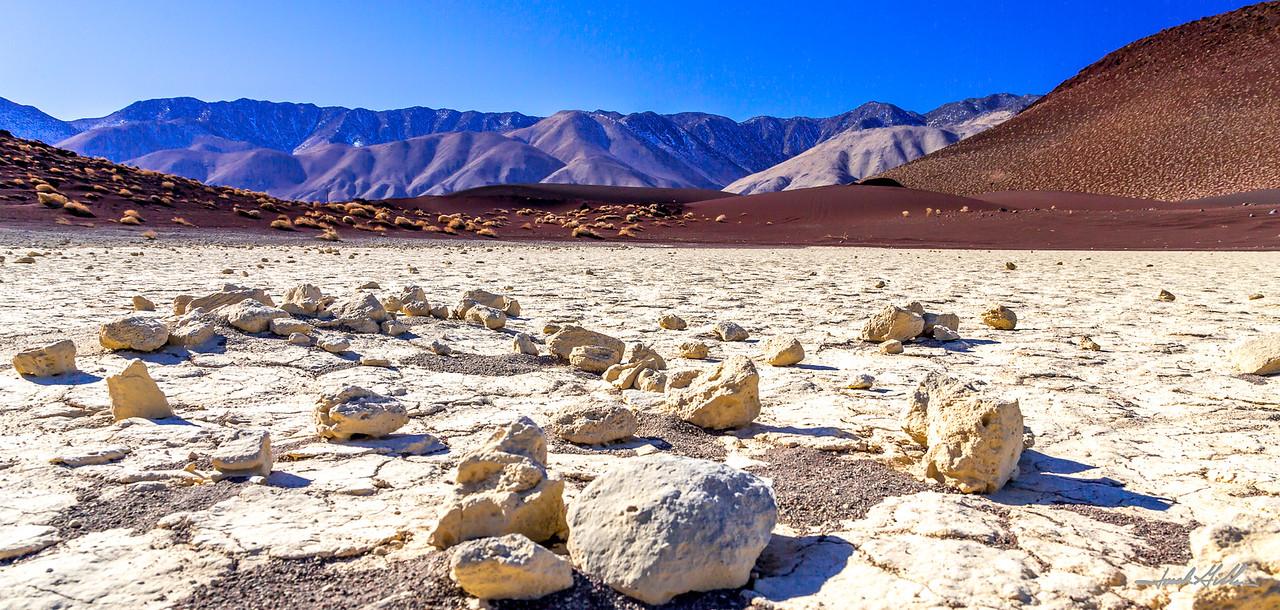 Contrast in the desert