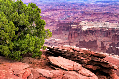 Grand View, Canyonlands