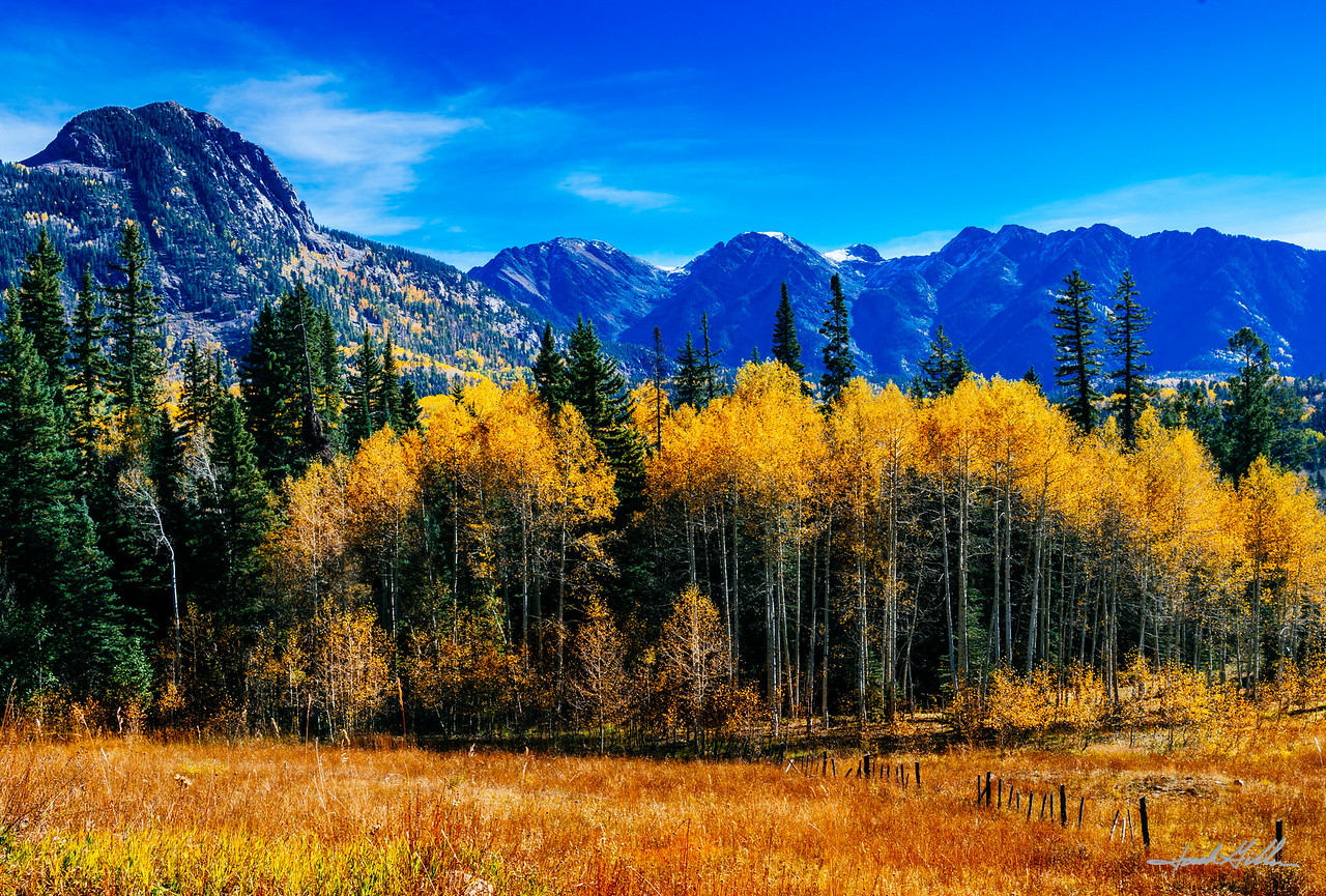 Fall colors near Telluride