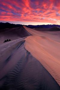 Daybreak on Mesquite Dune