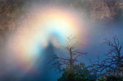 Brocken Spectre, Grand Canyon