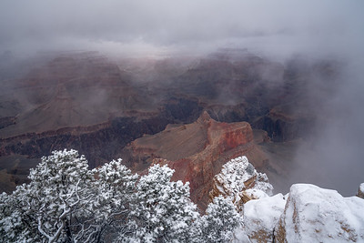Fresh Snow at Grand Canyon