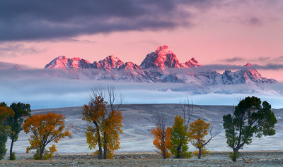 Morning Alpenglow on Teton Range