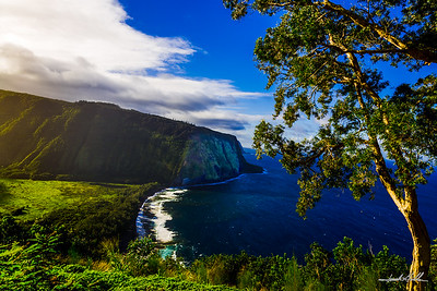 Dramatic view, Waipi'o Bay & Valley