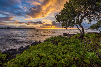 Wailua Bay Morning