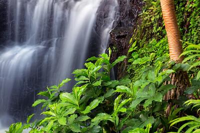 Queen's Bath Falls