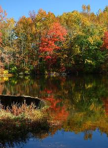 IMG#3161 Alloway Lake-New Jersey Fall 2008