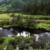 Alaskan Prairie