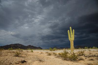 The Arizona desert, Phoenix area.