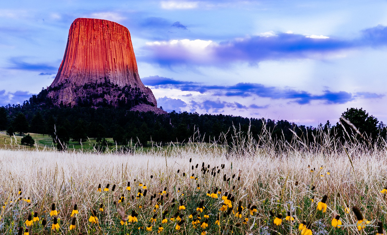 Devils Tower @ Sunset