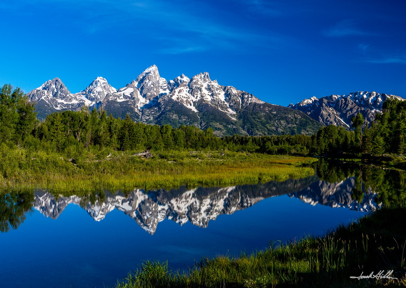 A Teton reflection