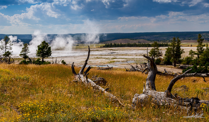 Lower Geyser Basin- Fountain Paint Pot
