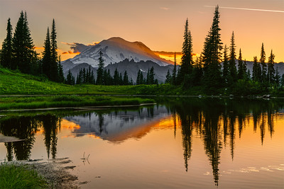 Rainier Reflections