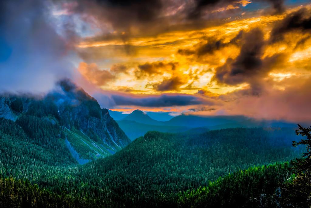 A Foggy Sunset in Mt.Rainier National Park