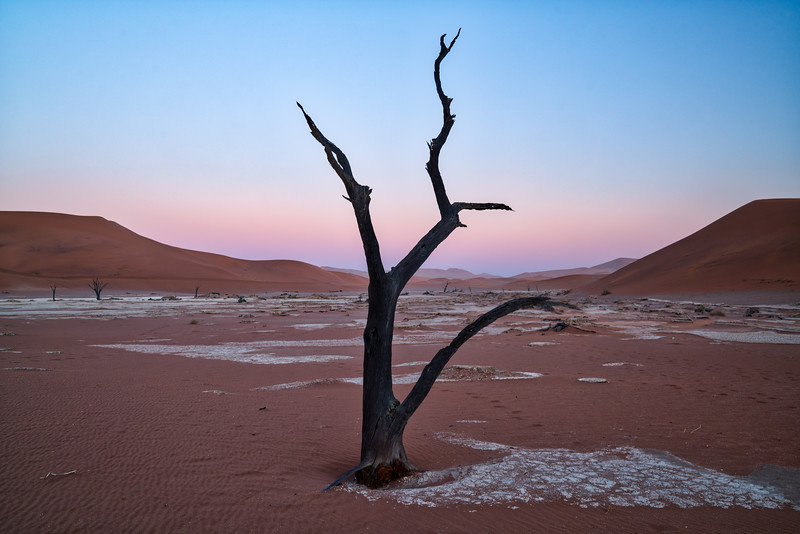 Morning Twilight at Deadvlei