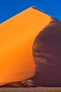Dune 45 in Wind Storm