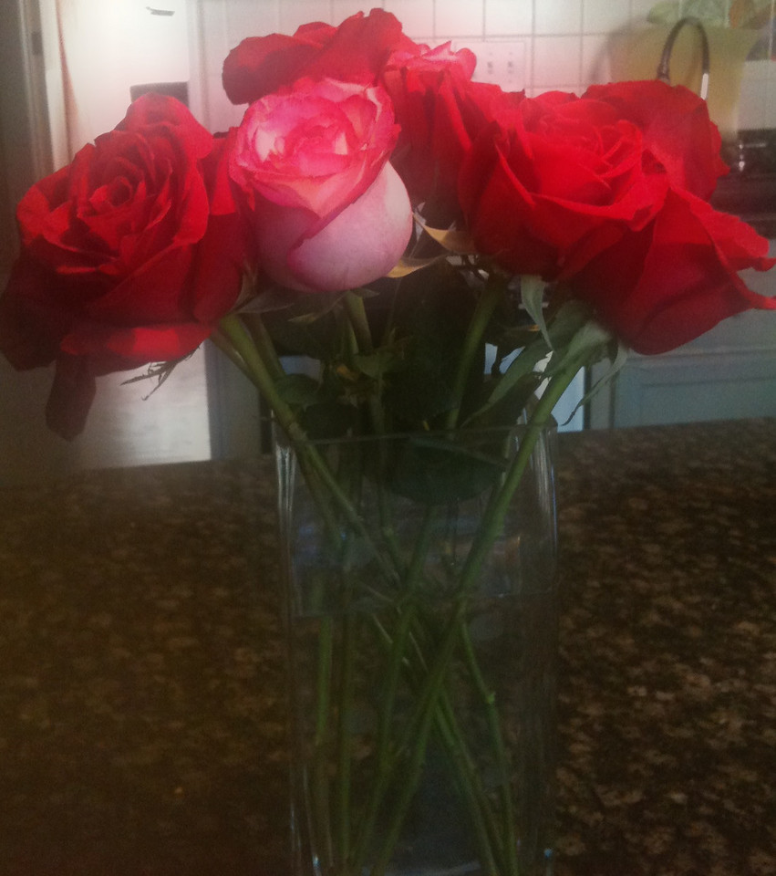 Some roses for Sweetest day--all the way from Nantucket.