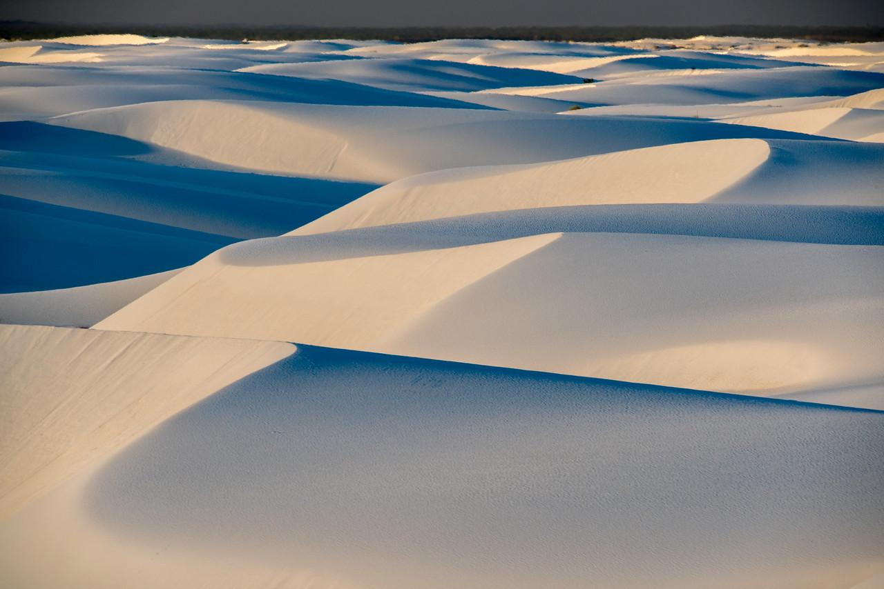 Large Dune Field
