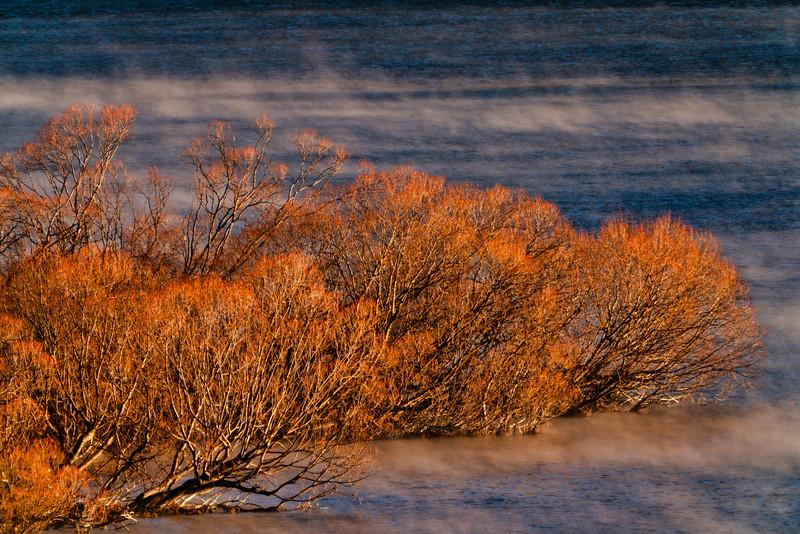 Morning Mist on Lake Wakatipu