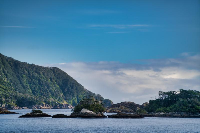 Doubtful Sound Meets Sea