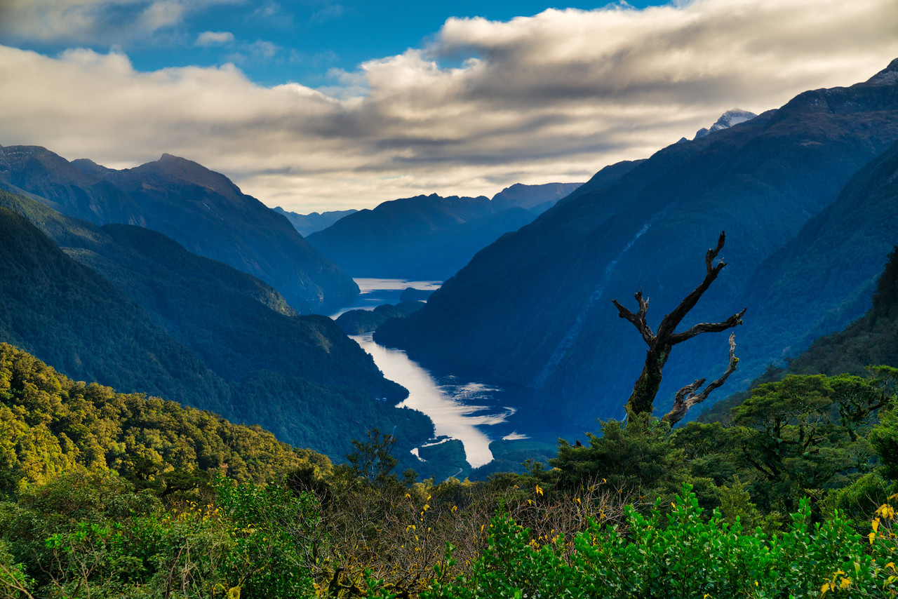 Doubtful Sound Lookout