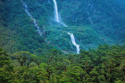 Waterfalls Through Trees