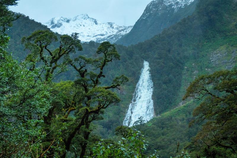 Winter Day in Fiordland