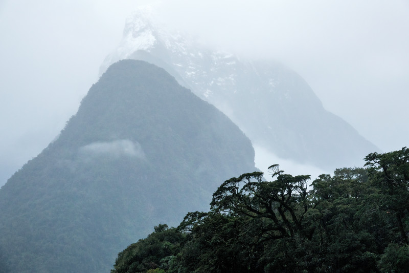 Stormy Day on Milford Sound