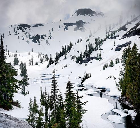 Mt. Baker National Forest: