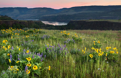 Dawn at Columbia River Gorge