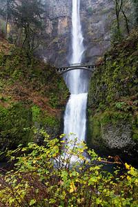 Moltnomah Falls